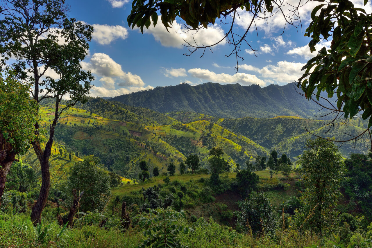 things to do in Kalaw